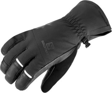 Salomon Propeller Dry Glove